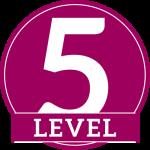 badge_5